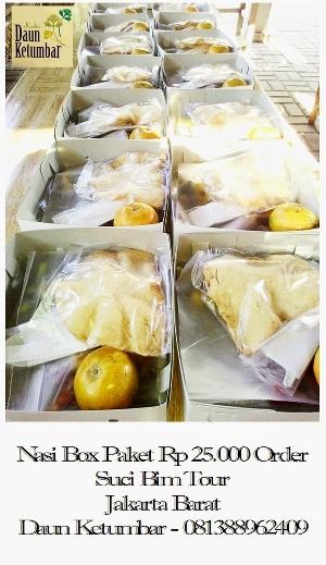 Nasi box ultah di Jakarta